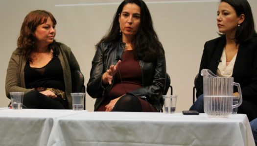 Indigenous stories are mainstream stories, say panellists