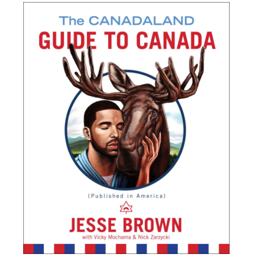 The guidebook rages against the Canadian establishment, providing an exhilarating read for our critic.