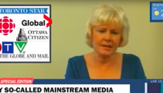 CJFE condemns MP's 'fake news' attack on media